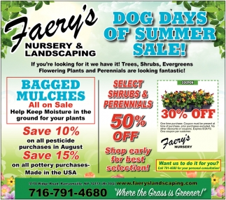 Dog Days Of Summer Sale!