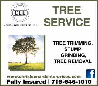 Tree Trimming, Stump Grinding, Tree Removal