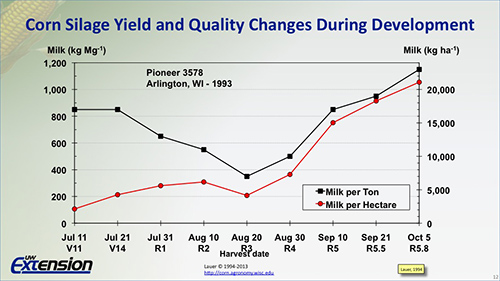corn silage yield and quality changes during development