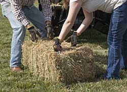 using gloves to lift hay
