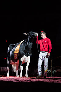 2015 Supreme Champion of the Junior Show at World Dairy Expo