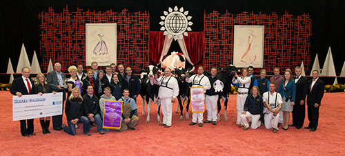 Grand Champion of International Holstein Show at 2014 World Dairy Expo