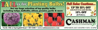 Fall is for Planting Bulbs