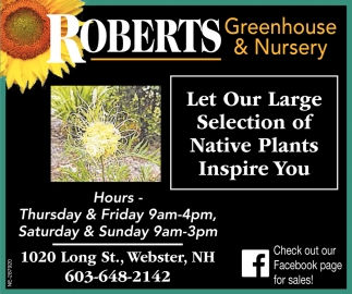 Let Our Large Selection Of Native Plants Inspire You