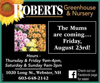 The Mums Are Coming