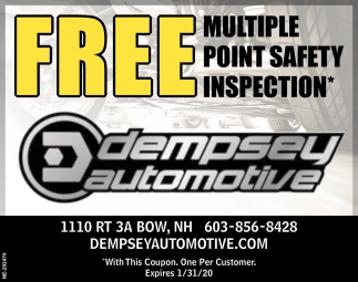 Free Multiple Point Safety Inspection