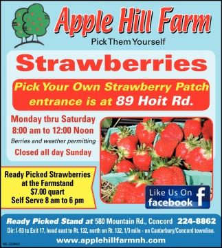 Pick Your Own Strawberry Patch Entrance
