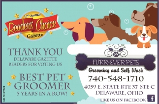 Best Pet Groomer 5 Years In a Row