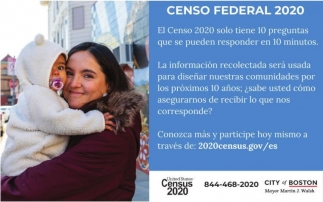 Censo Federal 2020