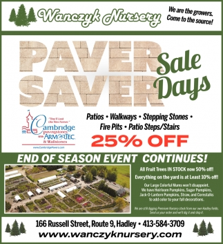 Paver Saver Sale Days
