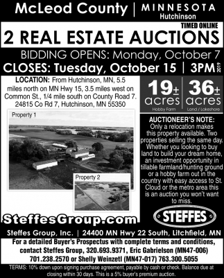 2 Real Estate Auctions