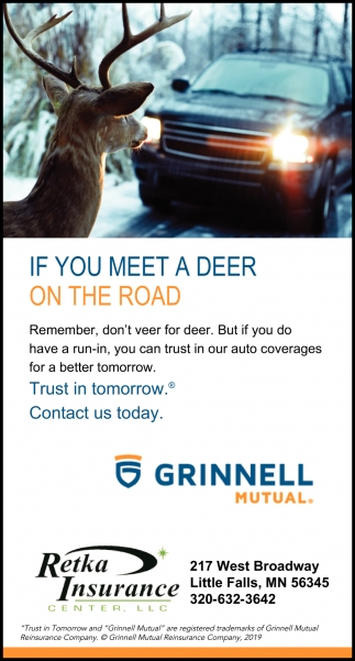 If You Meet a Deer On the Road