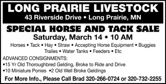 Special Horse and Tack Sale