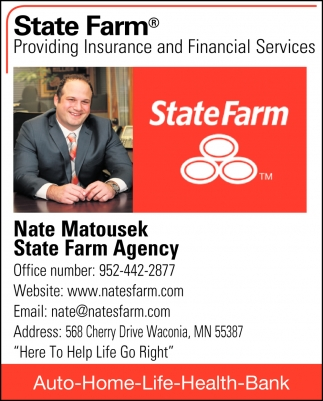 Providing Insurance and Financial Services