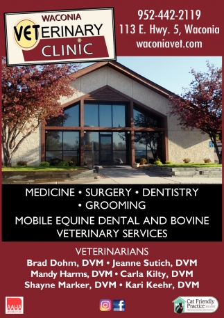 Mobile Equine Dental And Bovine Veterinary Services