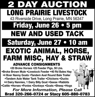 2 Day Auction