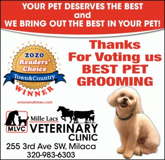 Thanks for Voting Us Best Pet Grooming