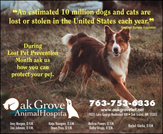 During Lost Pet Prevention Month Ask Us How You Can Protect Your Pet
