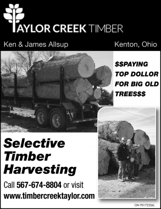Selective Timber Harvesting