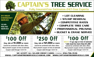 24 Hours Emergency Service Captain S Tree Service Voorhees Nj