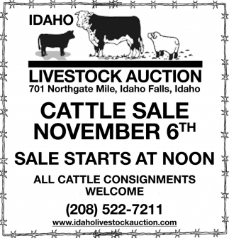 Cattle Sale November 6th