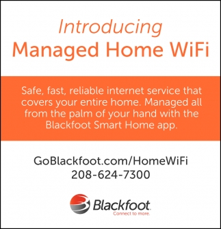 Managed Home WiFi
