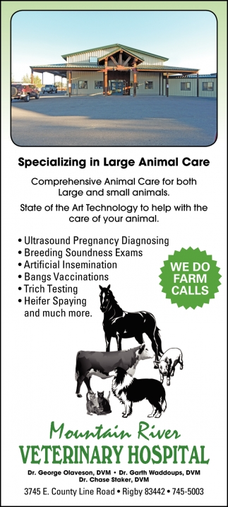 Specializing in Large Animal Care