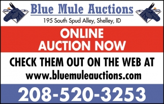 Online Auction Now