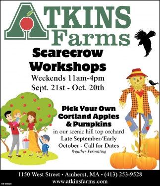 Scarecrow Workshops