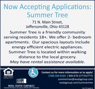 Now Taking Applications: Summer Tree