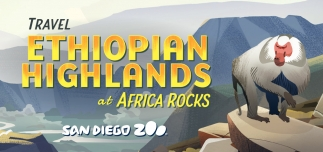 Ethiopian Highlands at Africa Rocks