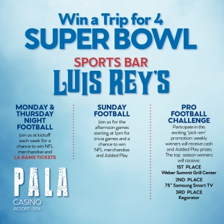 Win a Trip for 4 Super Bowl