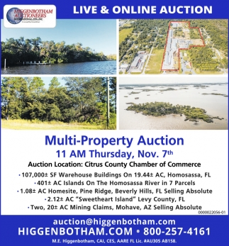 Multi-property Auction
