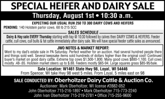 Special Heifer and Dairy Sale