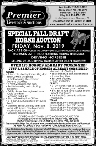 Special Fall Draft Horse Auction