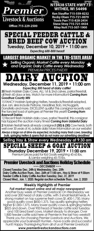 Special Feeder Cattle Auction