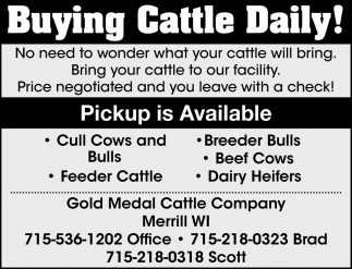 Buying Cattle Daily!