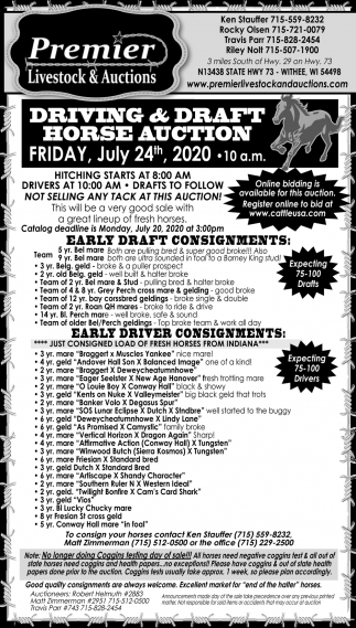 Driving & Draft Horse Auction