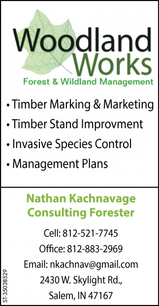 Timber Marking & Marketing