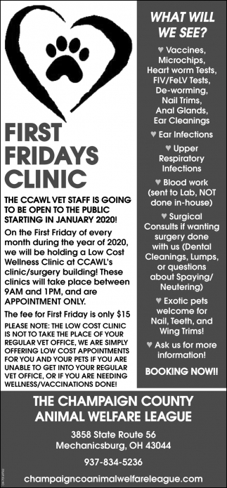 First Fridays Clinic