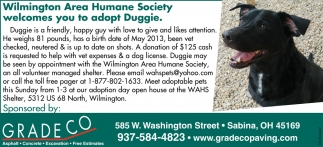 Wilmington Area Humane Society welcomes you adopt Duggie