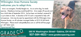 Clinton County Humane Society welcomes you to adopt Arie