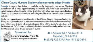 Wilmington Area Humane Society welcomes you to adopt Sweetie