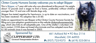 Wilmington Area Humane Society welcomes you to adopt Skipper