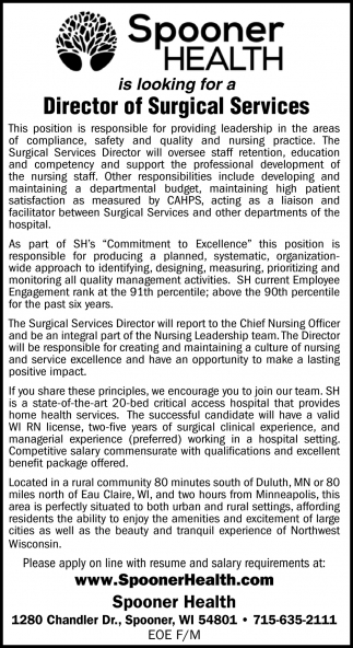Director of Surgical Services