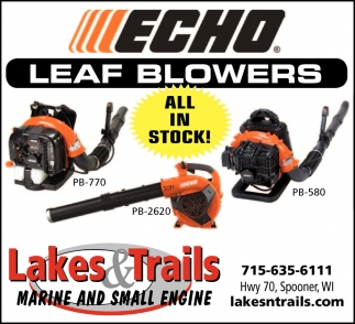 Echo Leaf Blowers