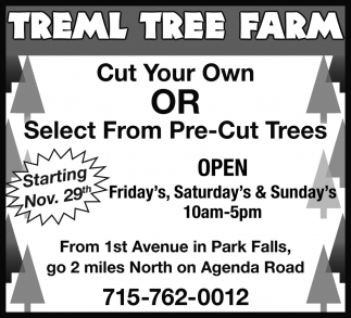 Cut Your Own or Select Pre-Cut Trees