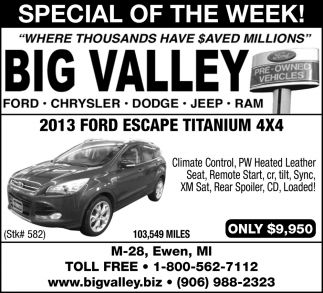 Special of the Week