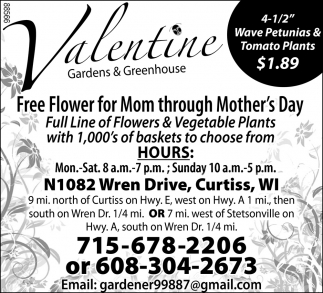 Free Flower for Mom Through Mother's Day