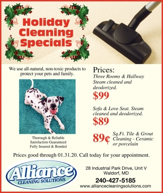 Holiday Cleaning Specials